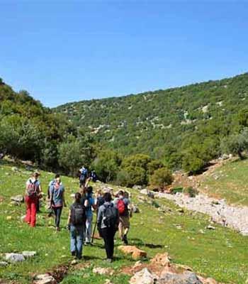 Ajloun walk 350x400