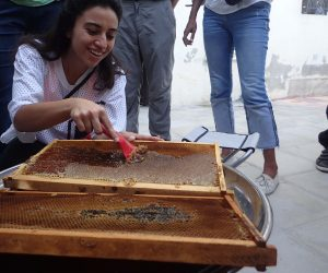 apiculture experience